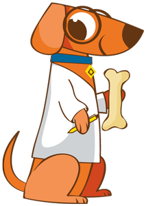 Which Treats Are Best For My Dog?