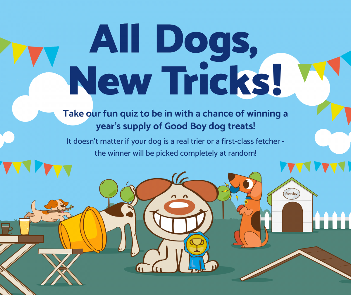 All Dogs, New Tricks!